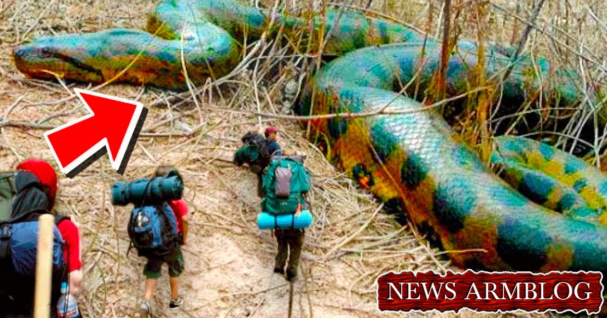 10 արտասովոր փաստ կենդանակերպի Ձկներ նշանի մասին